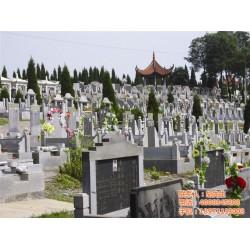 陵园、湖北红山寺陵园、天堂思源(优质商家)