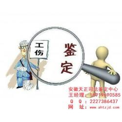 安徽天正(图)|工伤鉴定多少钱|合肥工伤鉴定
