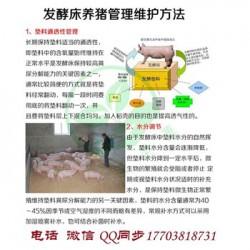发酵床技术养猪有什么好处 用欣圣源发酵床