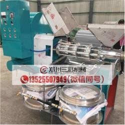 怀化棉籽榨油机/小型芝麻榨油机价格低厂家
