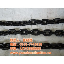 起重链条_泰安鑫洲机械公司_起重链条生产厂