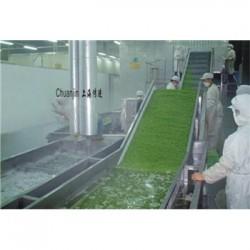 厂家直销 鑫正达果蔬气泡清洗机中药清洗机