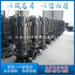200WQ潜水排污泵型号意义_八方水泵_200WQ潜