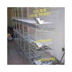 鸽子笼兔子笼鸡笼鸟笼狗笼狐狸笼鹌鹑笼运输筐运输笼鸽笼兔笼貉笼