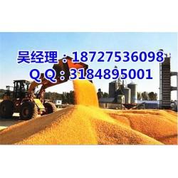 玉米大豆|民发养殖|收购玉米大豆的老板