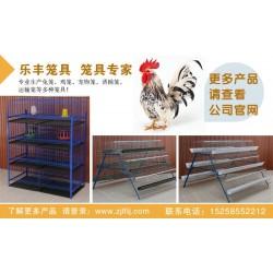 广东兔笼|自动喂养兔笼|乐丰笼具(优质商家)
