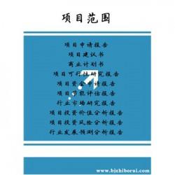 水性涂料动性涂料PPP项目可行性研究报告