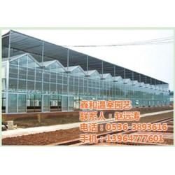 即墨太阳能温室|太阳能温室公司|鑫和温室园