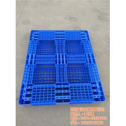 仓储用塑料卡板|盛达|西藏塑料卡板