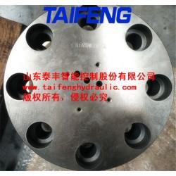 厂家直销泰丰TLFA80WEZA-7X二通插装阀盖板