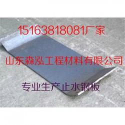 惠州钢板止水带代理商