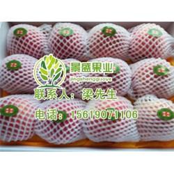 景盛果业(图)|洛川苹果礼盒|洛川苹果