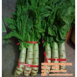 有机蔬菜供应商、有机蔬菜、田润蔬菜批发(
