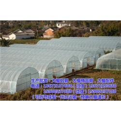 辛集温室大棚、一个温室大棚多少钱、【订做