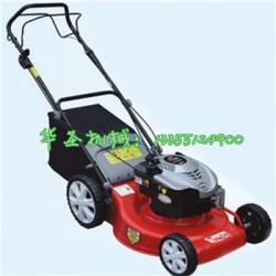 园区修剪草坪机 效率高草坪机