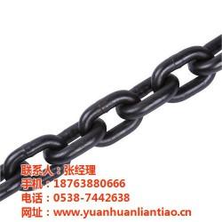 起重链条生产厂,起重链条,鑫洲机械(查看)