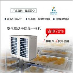 厂家直销空气能银耳烘干机3P