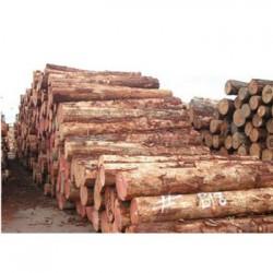 龙胜收购松木企业一览表