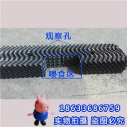 S型避光鳝巢价格  黄鳝养殖蜂窝鳝巢  PVC塑