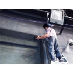 信誉好的淡水白蚁防治工程公司_惠州提供可