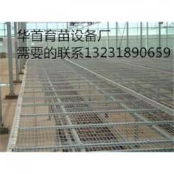 长期供应优质温室苗床网价格合理保证质量