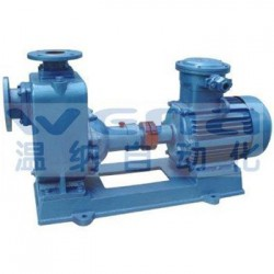 100CYZ-40,油泵