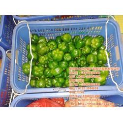 山农农副产品配送|东莞膳食承包企业哪家好|