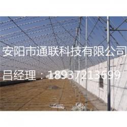 安阳薄膜连栋大棚专业生产厂家
