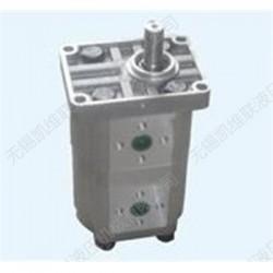 CBN-E320/E310,双联齿轮泵